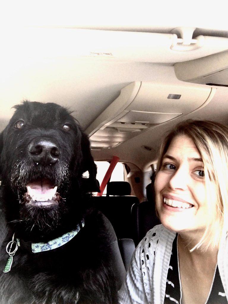 Charleston SC Dog Boarding | CharlestonGreenDogBoarding.com